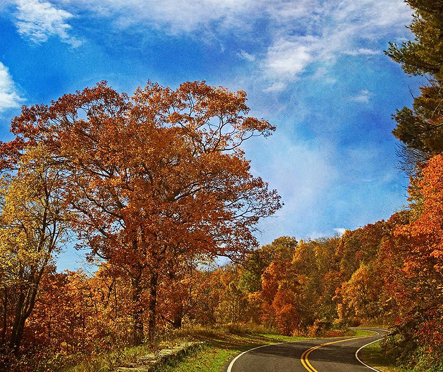 Autumn Photograph - The Road To Autumn by Kim Hojnacki