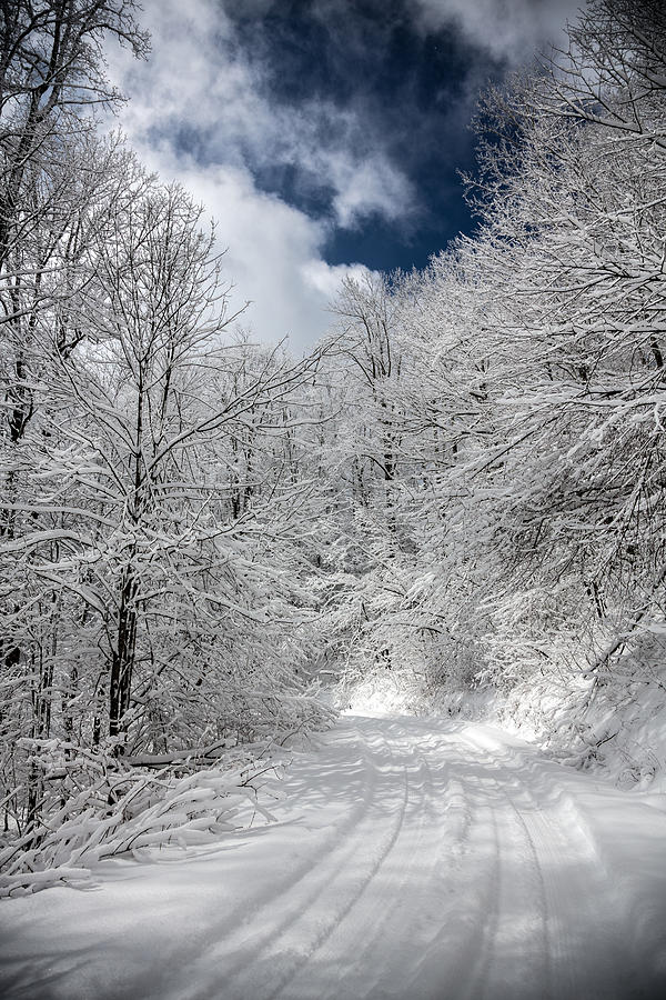 The Road To Winter Wonderland Photograph