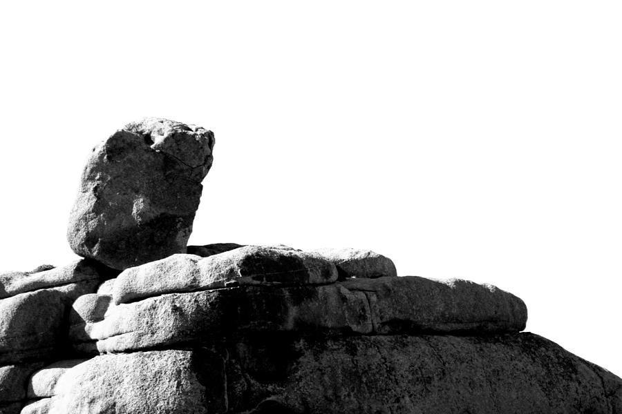 The Rocks Of Contrast Photograph