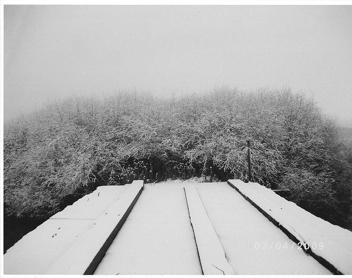 The Silence Of Winter Photograph