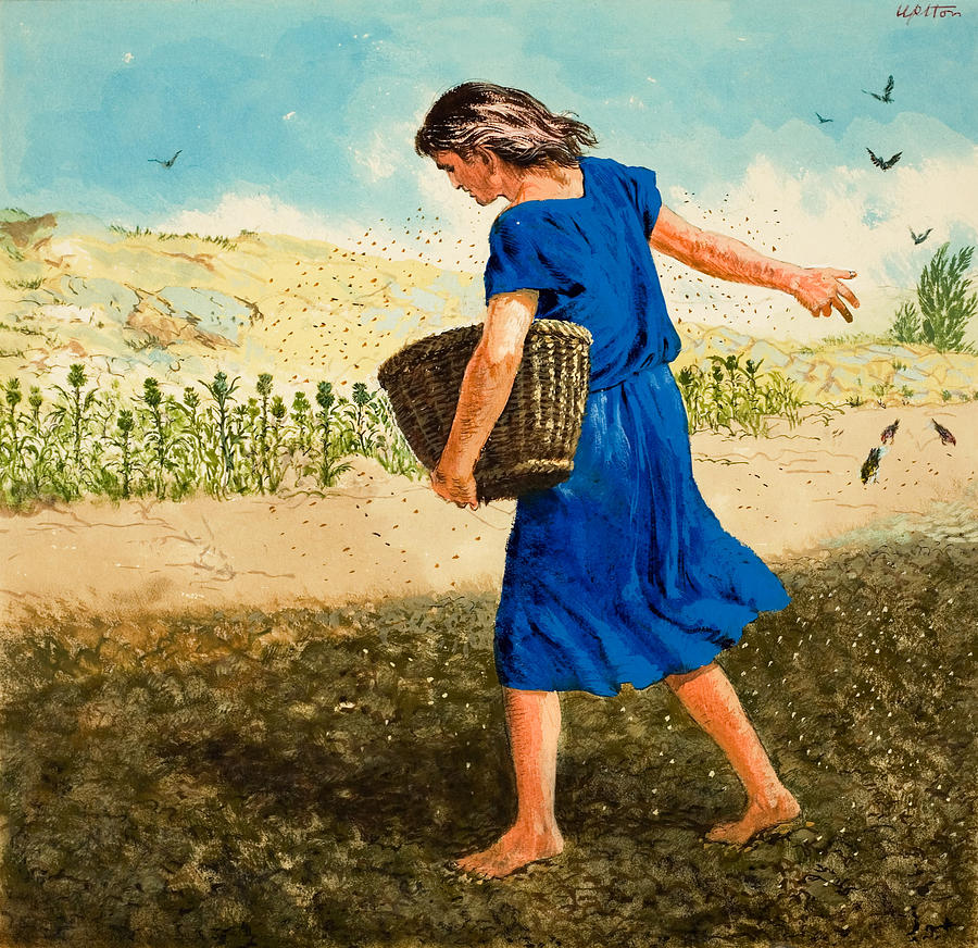 The Sower Of The Seed Painting