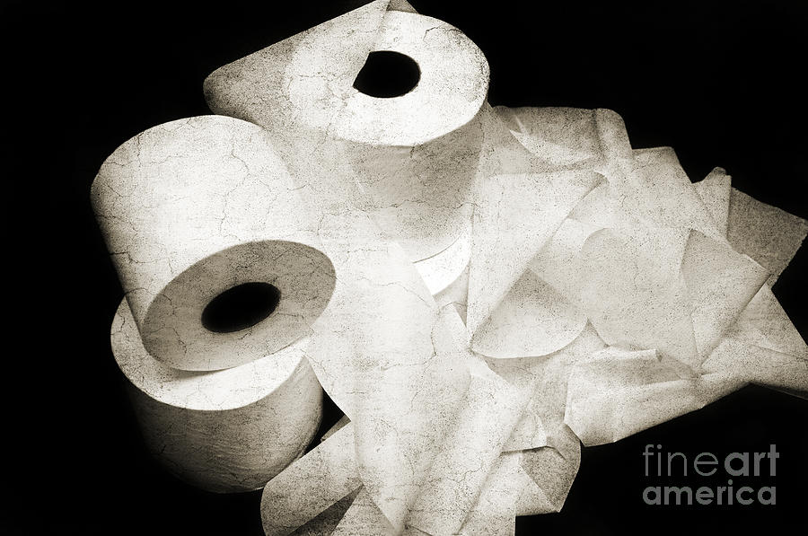 The Spare Rolls 2 - Toilet Paper - Bathroom Design - Restroom - Powder Room Photograph  - The Spare Rolls 2 - Toilet Paper - Bathroom Design - Restroom - Powder Room Fine Art Print