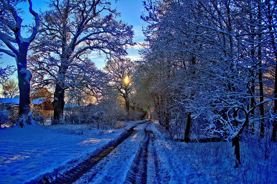 Snow Photograph - The Track by Dave Woodbridge