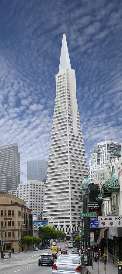 The Transamerica Pyramid - San Francisco Photograph  - The Transamerica Pyramid - San Francisco Fine Art Print
