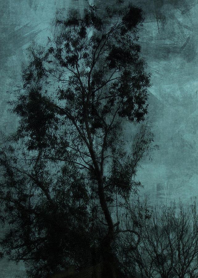 Tree Digital Art - The Tree by Sarah Vernon