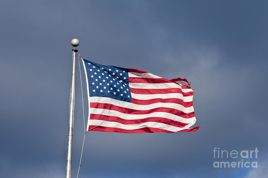 The United States Of America Photograph  - The United States Of America Fine Art Print