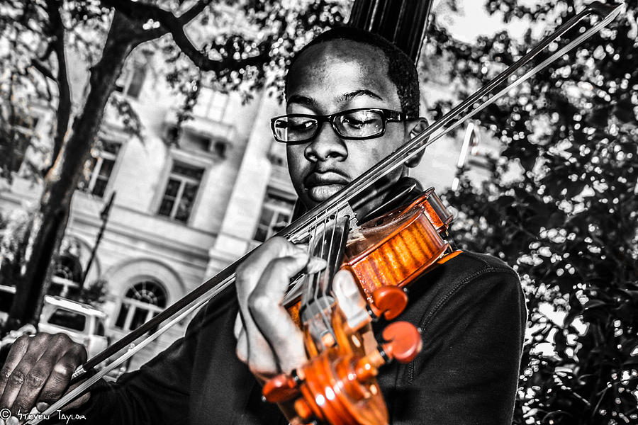 Musician  Photograph - The Violinist  by Steven  Taylor