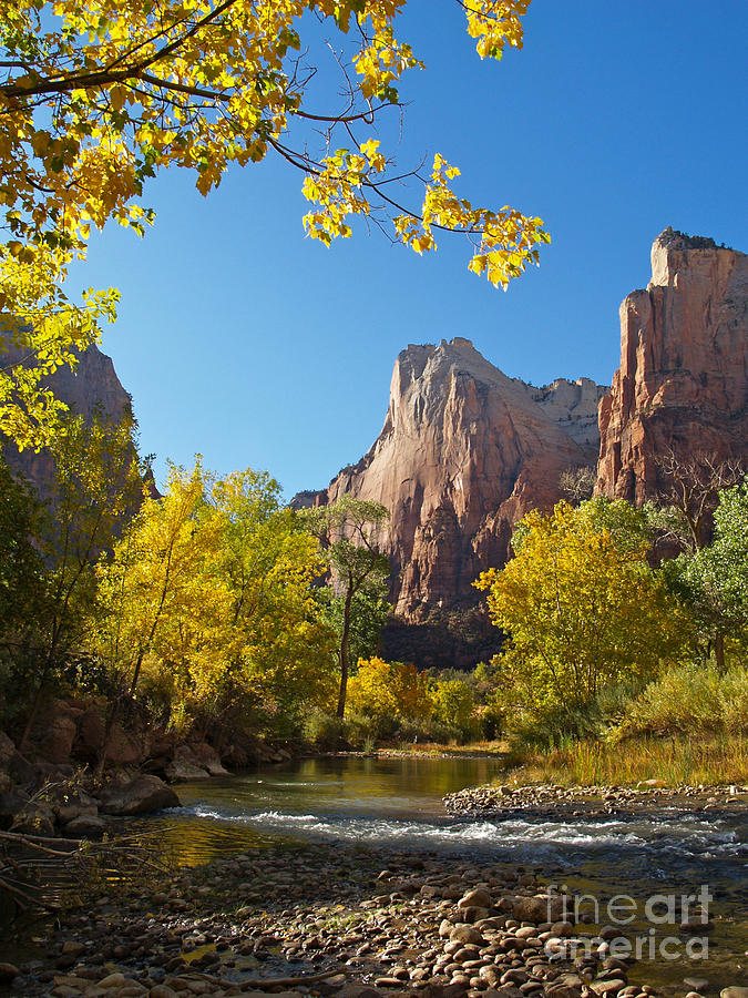 The Virgin River And The Court Of The Patriarchs Photograph  - The Virgin River And The Court Of The Patriarchs Fine Art Print