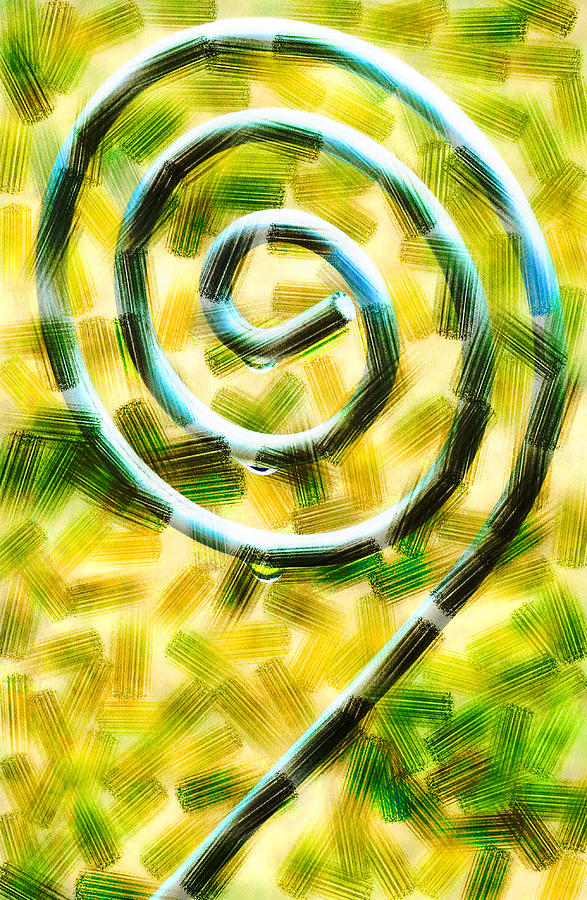 The Wet Whirl  Digital Art  - The Wet Whirl  Fine Art Print