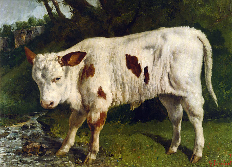 The White Calf Digital Art - The White Calf by Gustave  Courbet