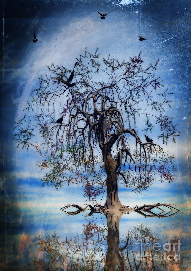 The Wishing Tree Painting  - The Wishing Tree Fine Art Print