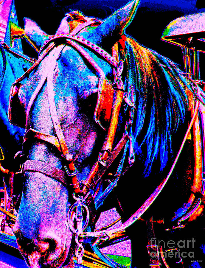 The Working Horse IIi Photograph