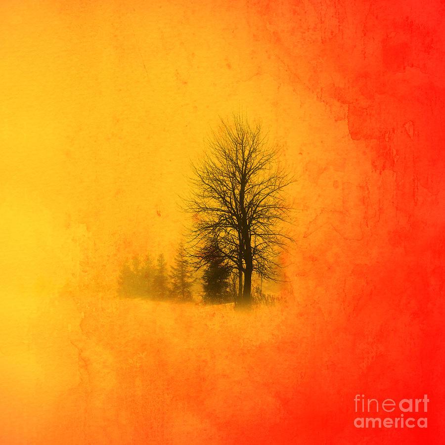 Nature Digital Art - Thee Tree  by Mark Ashkenazi