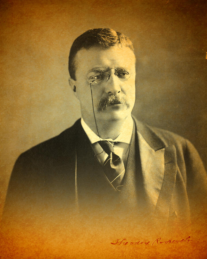 Theodore Teddy Roosevelt Portrait And Signature Photograph