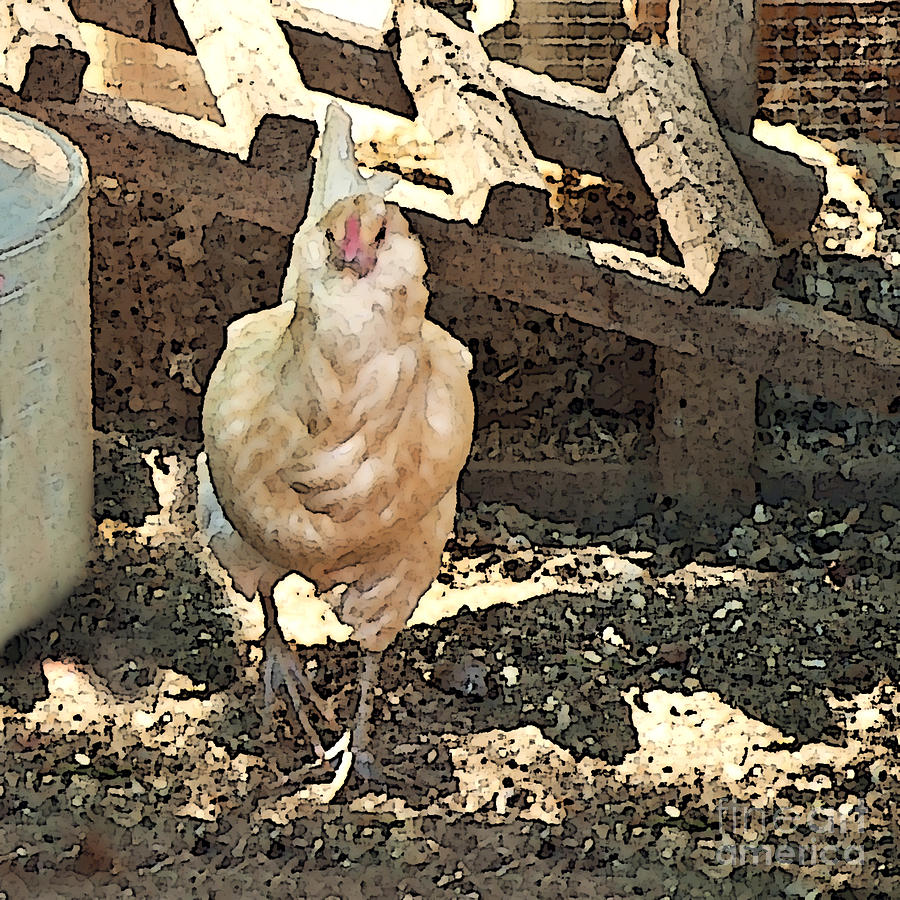 Theres  A Chicken In The Hen House Painting  - Theres  A Chicken In The Hen House Fine Art Print