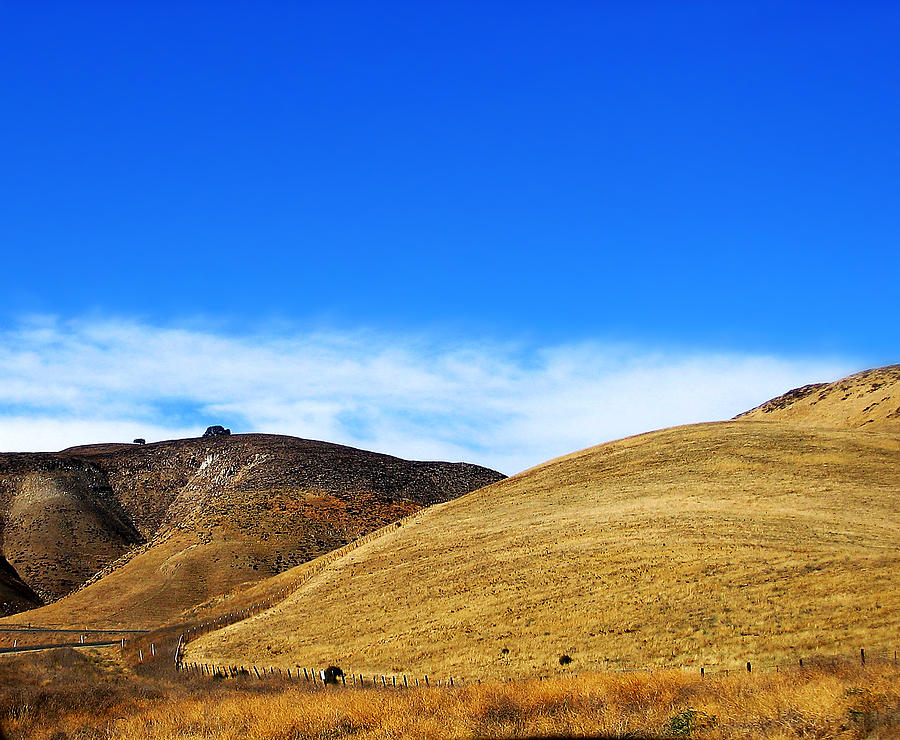 Theres Gold On Them Thar Hills Photograph  - Theres Gold On Them Thar Hills Fine Art Print
