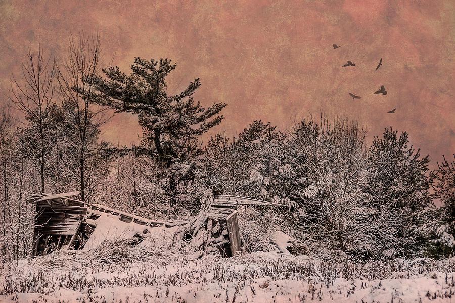Barn Photograph - They All Fall Down by Paul Freidlund