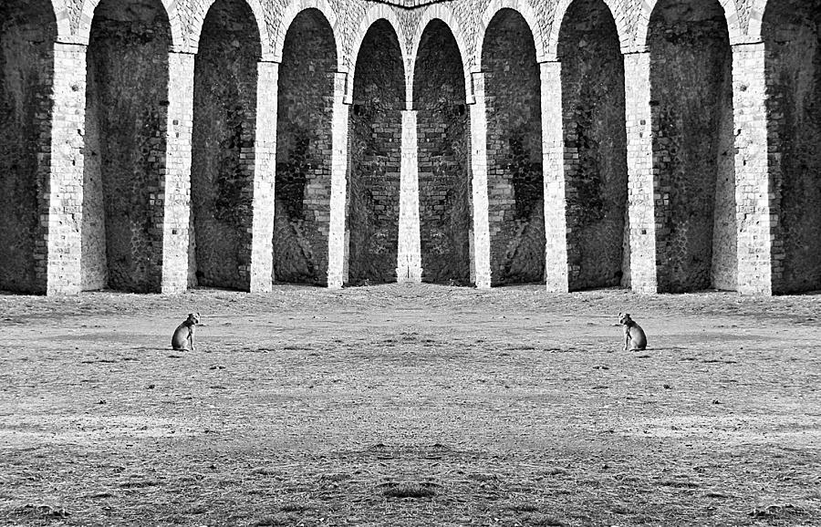 Think Symmetric  Photograph  - Think Symmetric  Fine Art Print