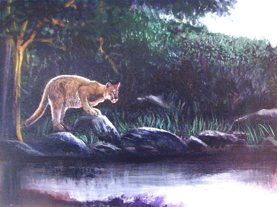 Thirsty Cougar Painting  - Thirsty Cougar Fine Art Print