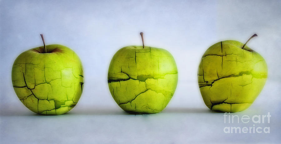 Three Apples Photograph  - Three Apples Fine Art Print