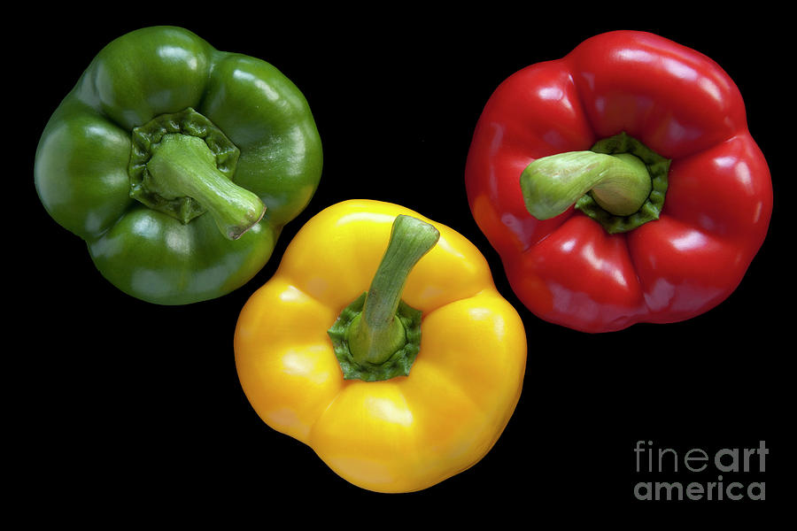 Three Colors Photograph  - Three Colors Fine Art Print