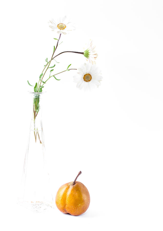 Three Daisies And A Pear Photograph