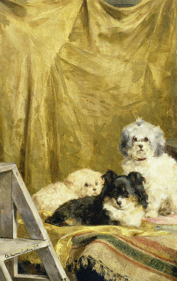 Three Dogs Painting