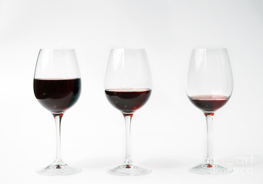 Three Glasses Of Wine  Photograph