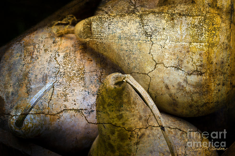 Three Gourds Photograph