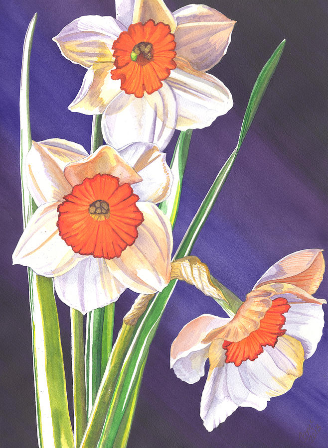 Three Jonquils Painting  - Three Jonquils Fine Art Print