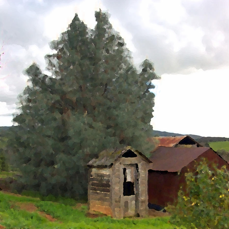 Three Old Sheds Photograph