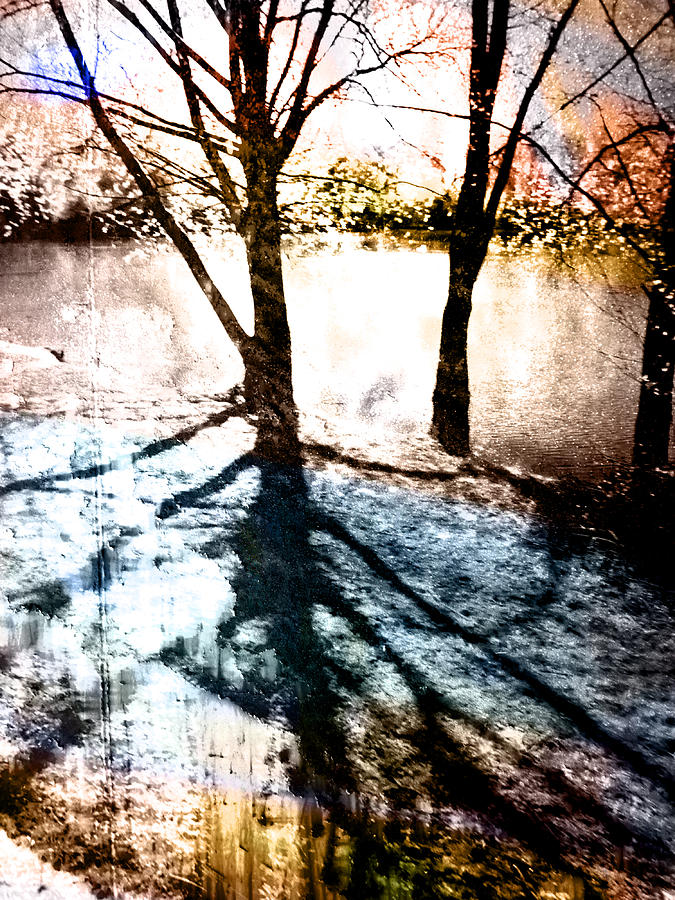 Blue Photograph - Through The Trees by Florin Birjoveanu