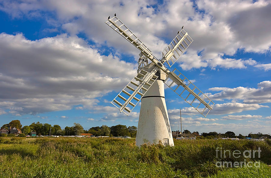 Thurne Dyke Windpump On The Norfolk Broads Photograph  - Thurne Dyke Windpump On The Norfolk Broads Fine Art Print