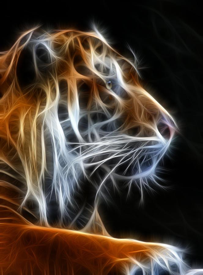 Tiger Photograph - Tiger Fractal 2 by Shane Bechler