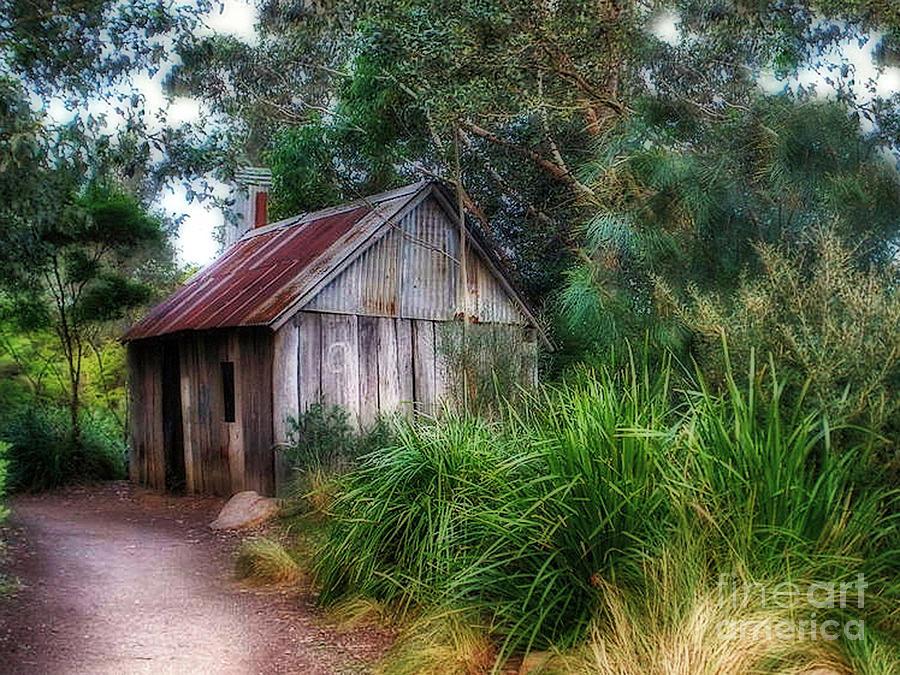 Timber Shack Photograph