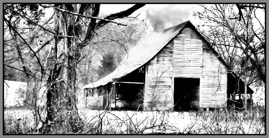 Barn Photograph - Timeless In Black And White by Betty LaRue