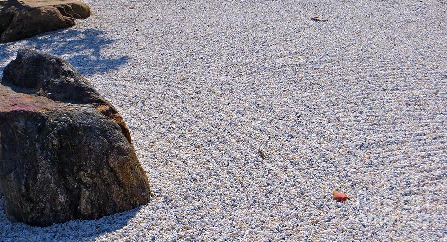 Timeless Zen Photograph