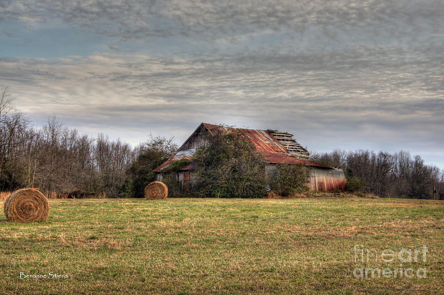 Tin Roof Rusted Photograph
