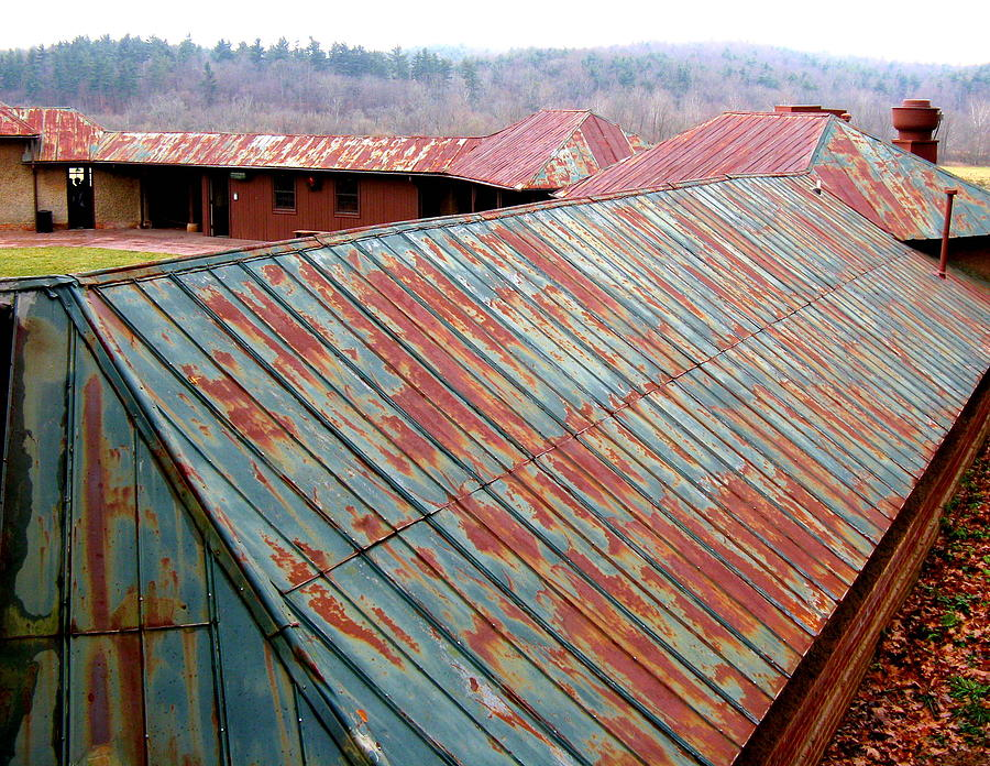 Tin Roof Rusted Photograph By Rollin Jewett