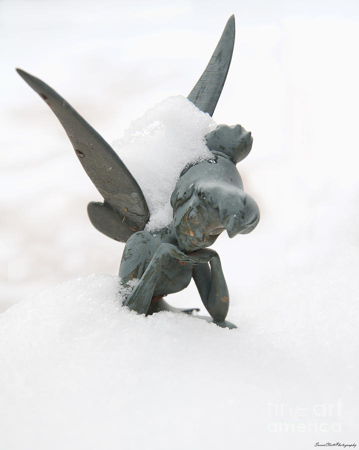Tinker Bell Photograph - Tink In The Snow by Susan Cliett