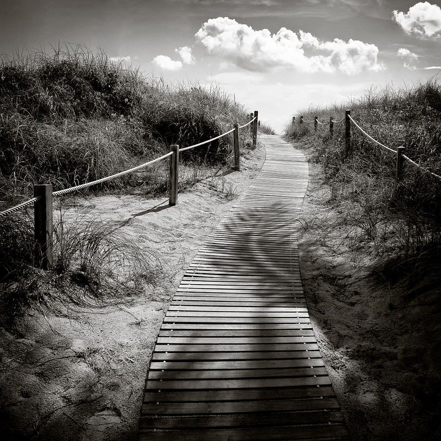 To The Beach Photograph  - To The Beach Fine Art Print