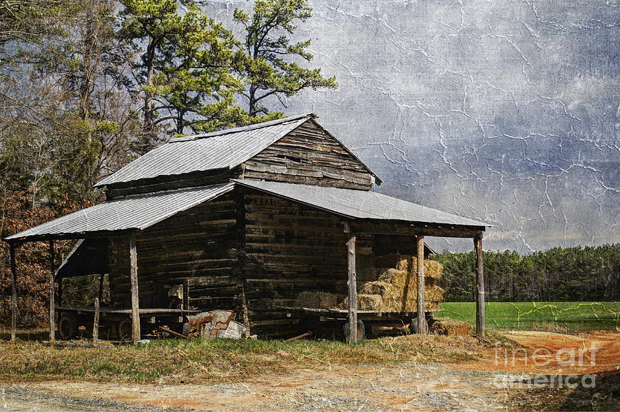 Tobacco Barn In North Carolina Photograph  - Tobacco Barn In North Carolina Fine Art Print