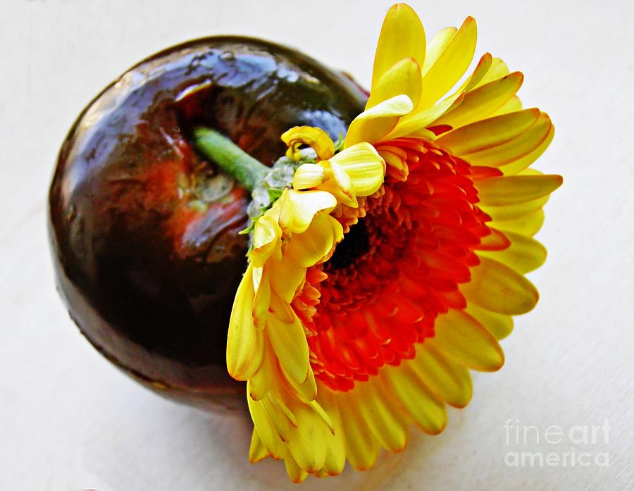 Tomato And Daisy Photograph  - Tomato And Daisy Fine Art Print