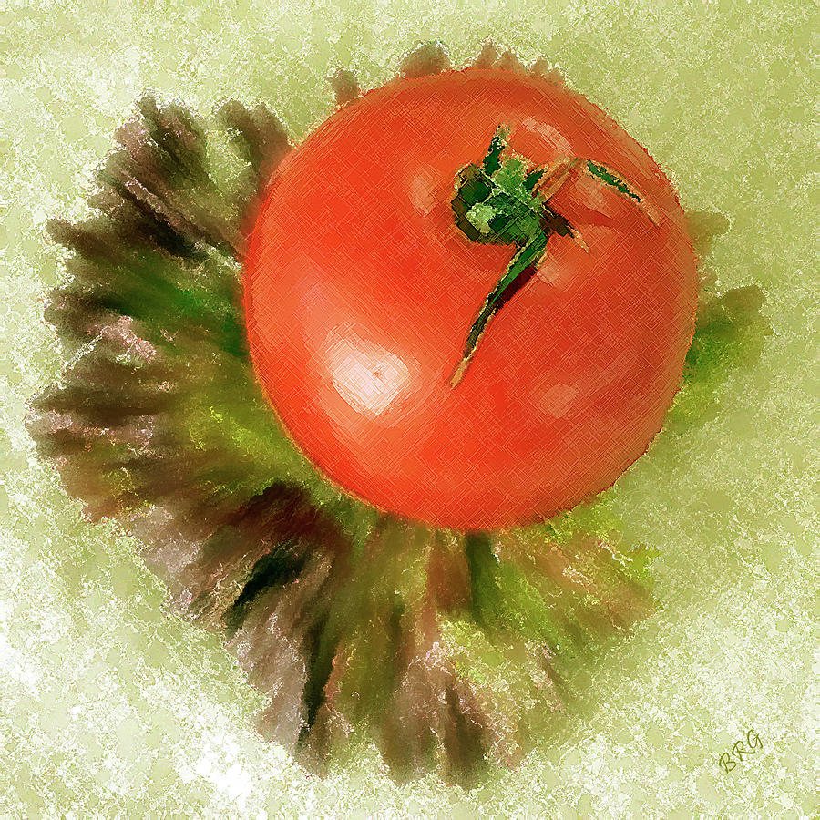 Tomato And Lettuce Photograph