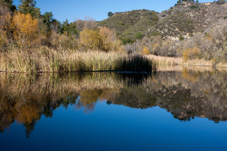 Topanga Canyon Series Photograph