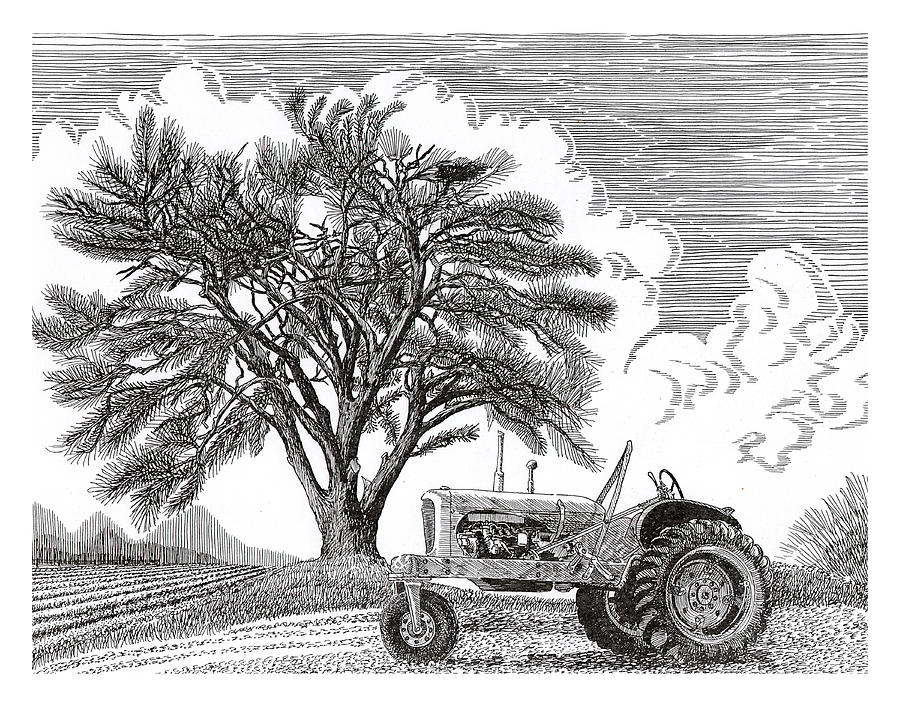 Tractor And Cottonwood Tree Drawing