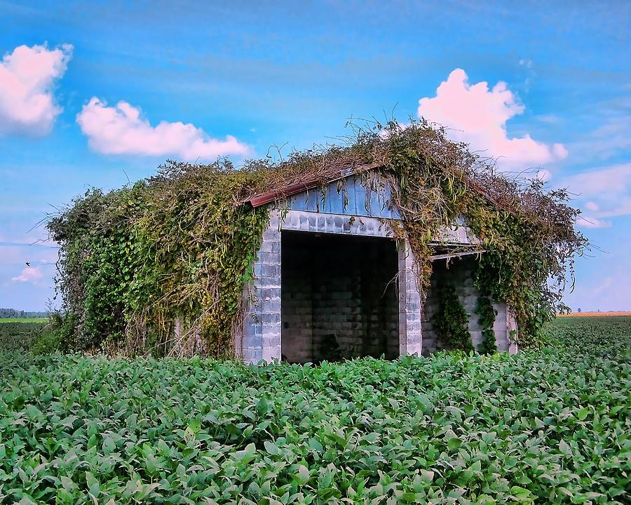 Tractor Shack Photograph