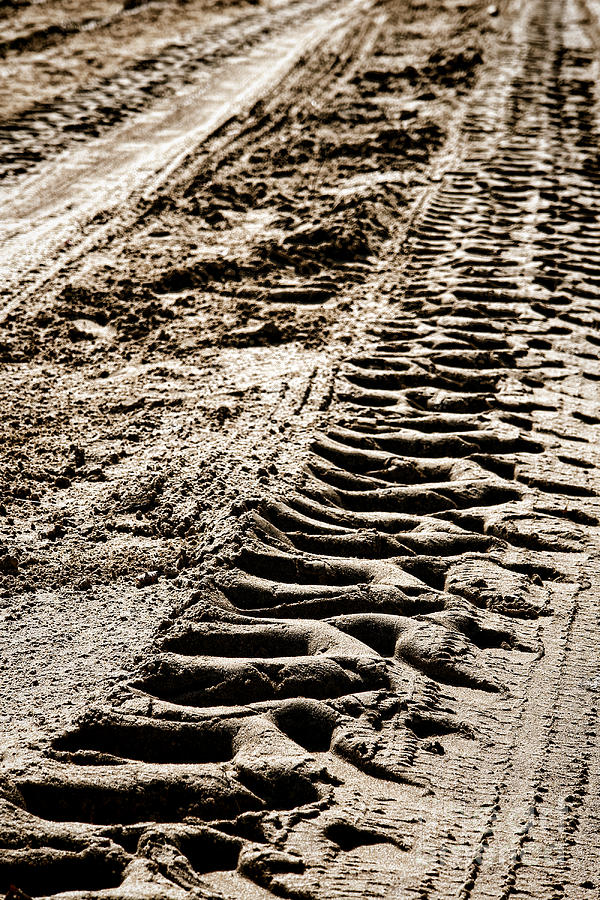 Tractor Tracks In Dry Mud Photograph