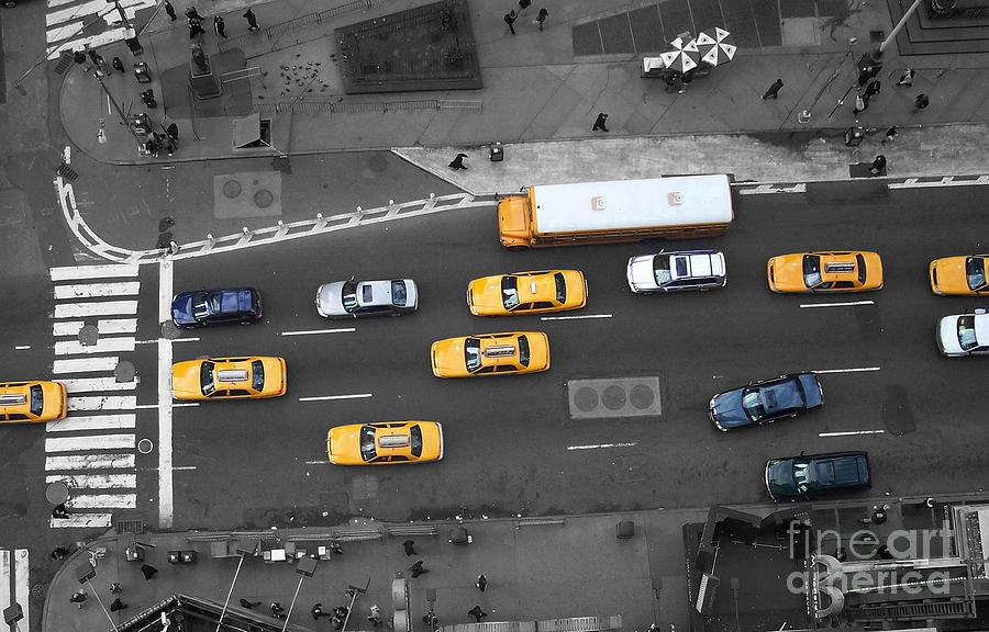 Traffic Report Photograph  - Traffic Report Fine Art Print