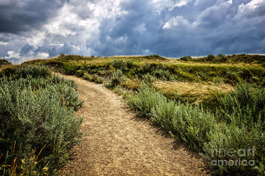 Trail In Badlands In Alberta Canada Photograph